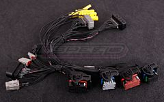 MaxxECU PRO adapter harness Corvette C6 (E38 ECM)